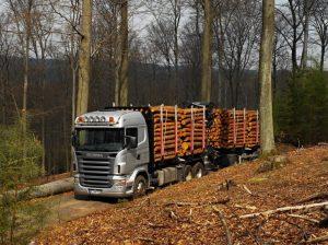 GPS за камиони с дървесина